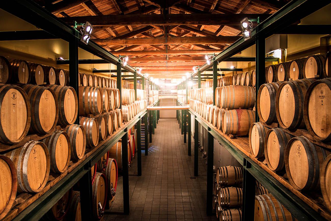Botti di vino piemontese DOCG nelle Langhe, Monferrato, Roero.